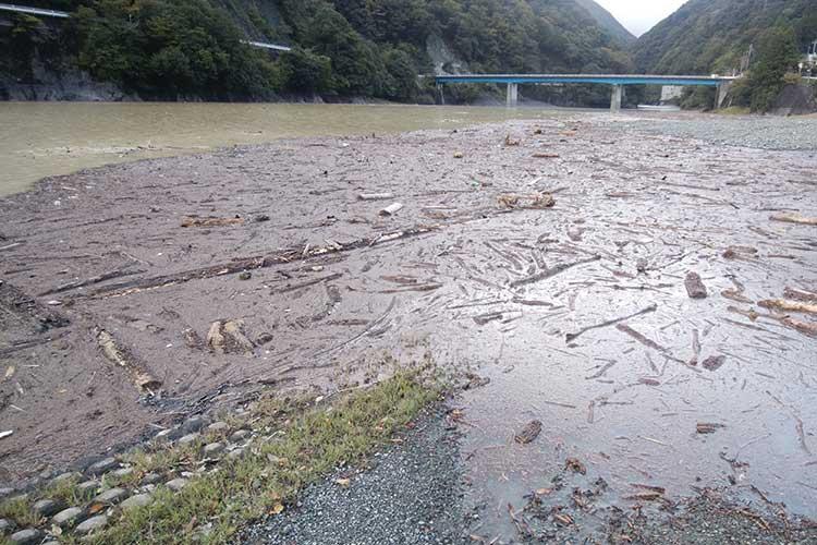 ゴミと濁りの丹沢湖